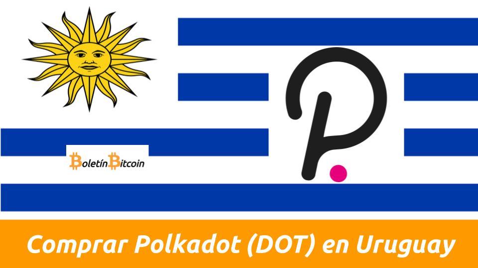 donde comprar polkadot en uruguay